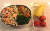 salmon rice & nikujaga bento