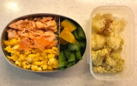 salmon & egg bi-colour bento