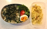 mixed rice bento